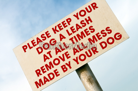 dog a leash