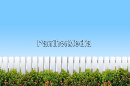 white fence and shrubs on blue