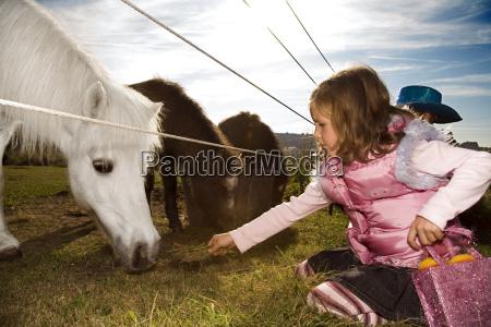 girl feeding horse