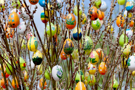 easter eggs with pussy willow