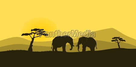 african wildlife silhouette with two elephant
