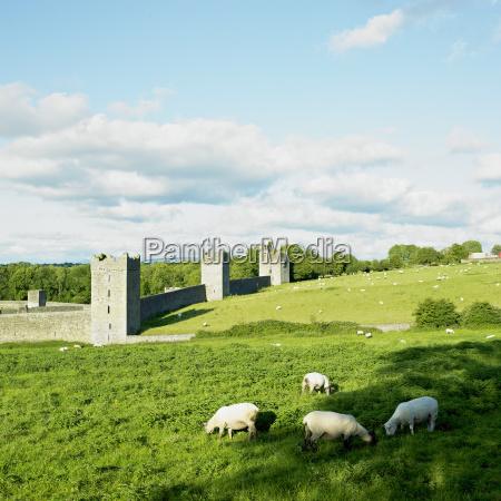 kells priory county kilkenny ireland