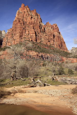 court of patricarchs virgin river zion
