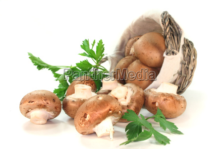 food aliment basket mushrooms parsley culinary