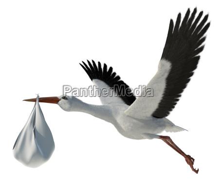 stork amp baby