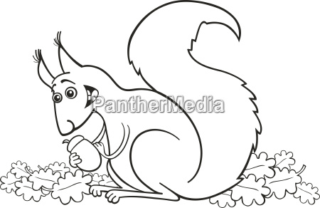 squirrel with nut for coloring book