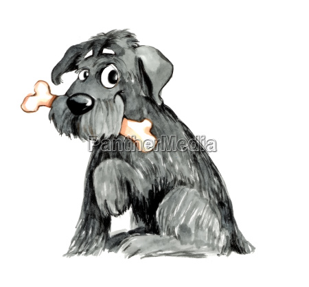 shaggy dog with bone