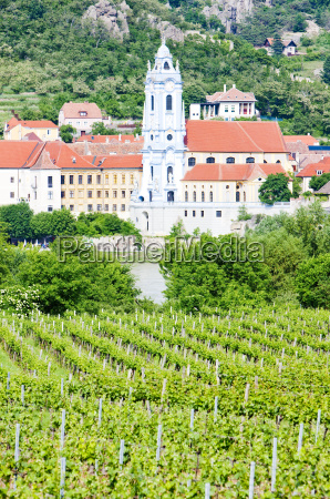 durnstein vineyard in wachau region lower