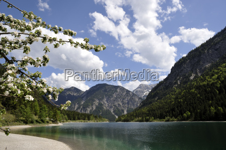 at the plansee in tyrol