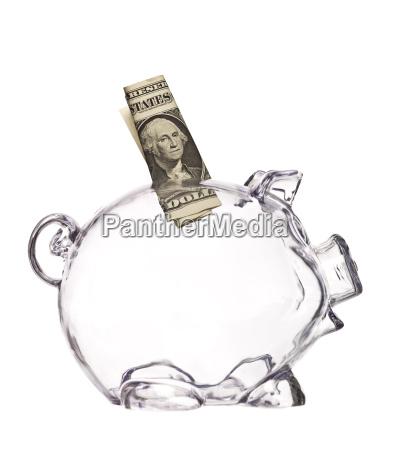 transparent pig bank with a dollar