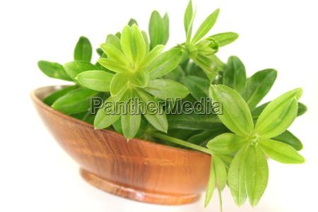 flavour taste woodruff fruit cup herbs