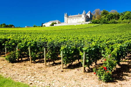 chateau de rully with vineyards burgundy