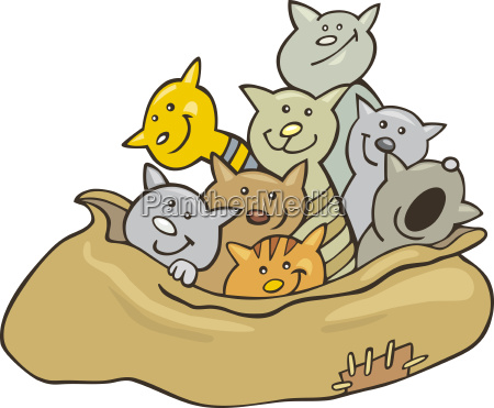 cats in sack