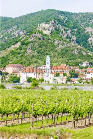 durnstein vineyard in wachau region lower