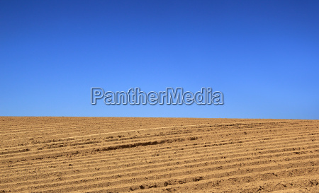agricultural fields cloudless 01