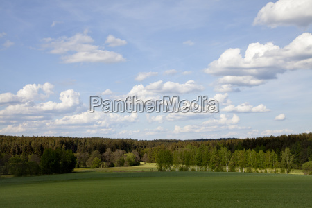 landscape in early summer with clouds