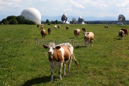 earth station raisting