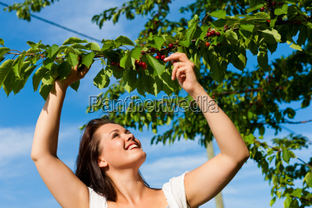 woman eating cherry in summer