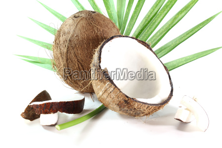kokosnuss - 5226831