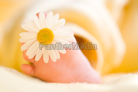 lovely infant foot with little white