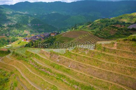 dragon039s backbone rice terraces and village