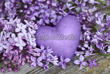 heart with lilac