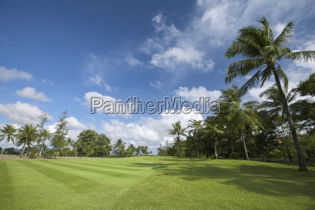 super-wide, angle, shot, of, a, tropical - 5429086