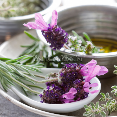 herbal still life