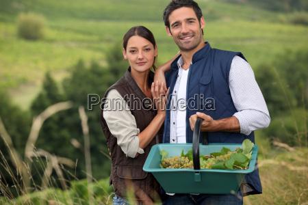 attractive couple grapepicking