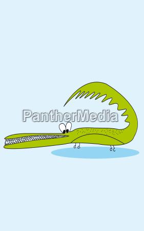 crocodile cools