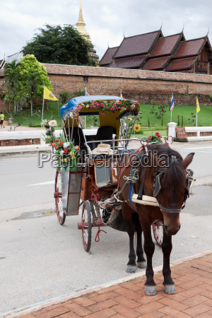 horse drawn carriage in lampang thailand