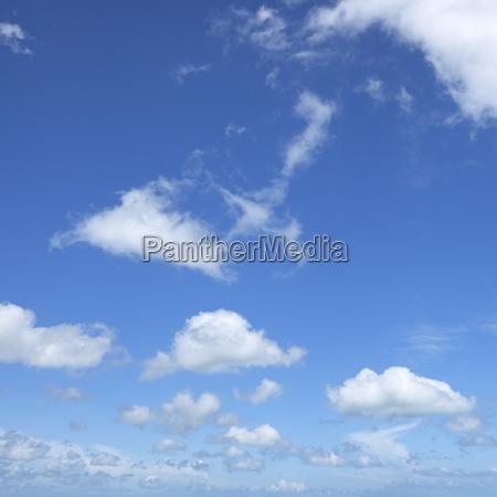 blue sky background square composition