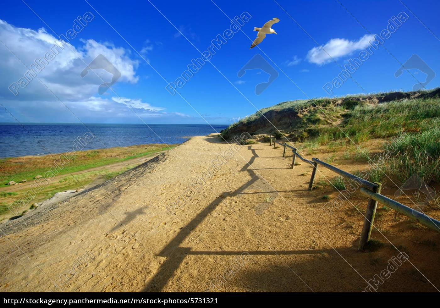 way, to, sylt, on, morsum, cliff - 5731321