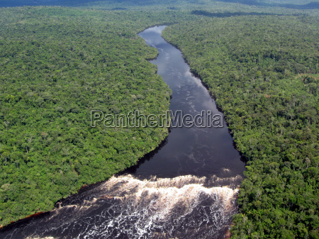 tropical amazon river