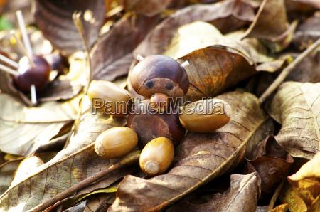 figurine made of chestnuts