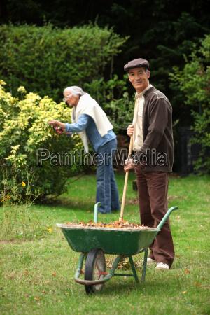 elderly couple gathering leaves