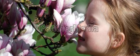 magnolia child