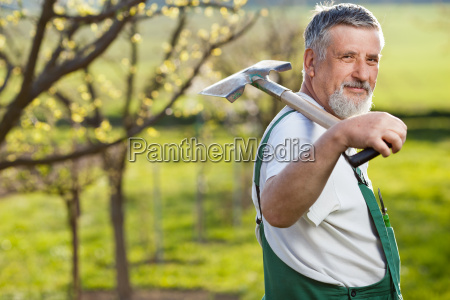 portrait of a senior man gardening