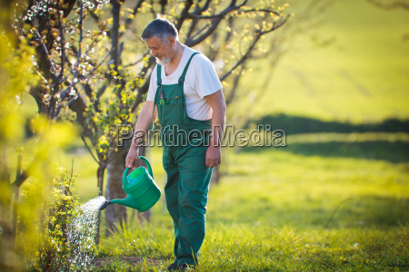 watering orchardgarden portrait of a