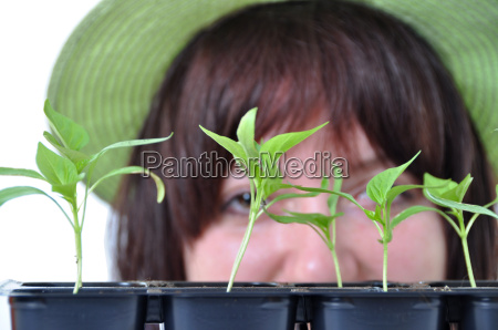 caring gardener looking after young plants