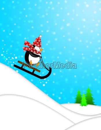 cute penguin on sled downhill illustration