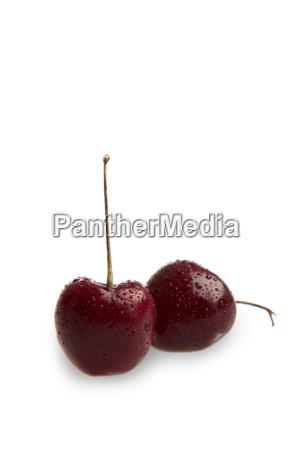cherry039s