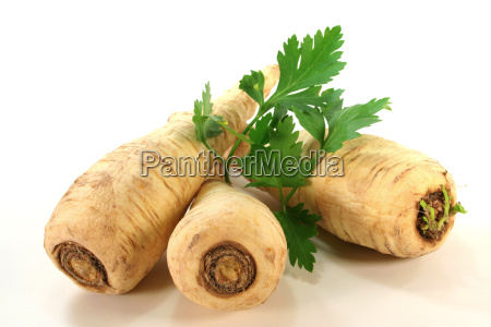 root parsley with smooth parsley