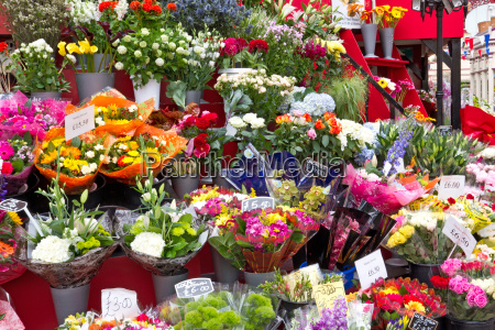 selection of cut flowers at a
