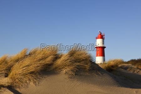 dunes at borkum beach and small