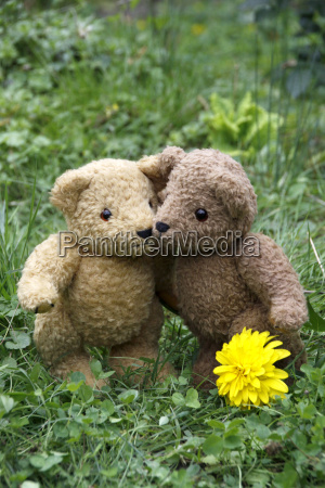 two to umramende teddy bear in