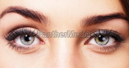 beautiful eyes of a woman