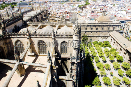 cathedral of seville view from la