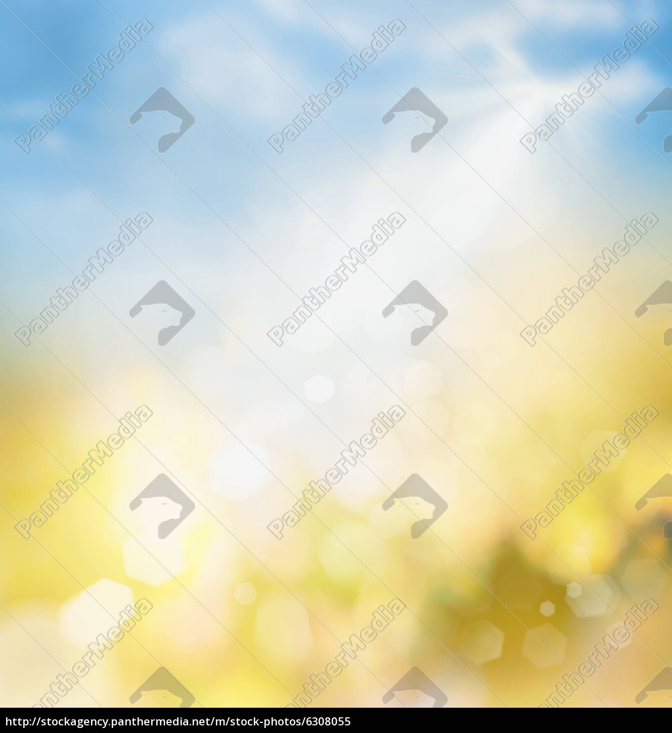spring, or, summer, abstract, nature, background - 6308055