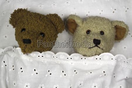cuddle hour with cuddly teddies
